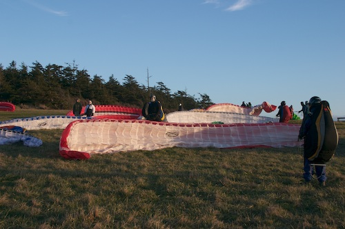 Fourteen winds laid out for launch.