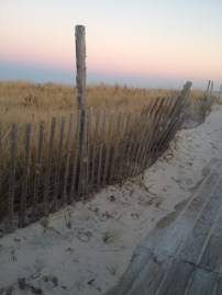 Dunes on LBI