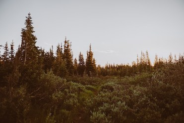 Mount Elopement at Brainard Lake in Boulder Ranger District, Indian Peaks Wilderness, Boulder, Colorado | Brainard Lake Elopement | Brainard Lake mountain elopement | Photos by Ashley Joyce Photography 2020