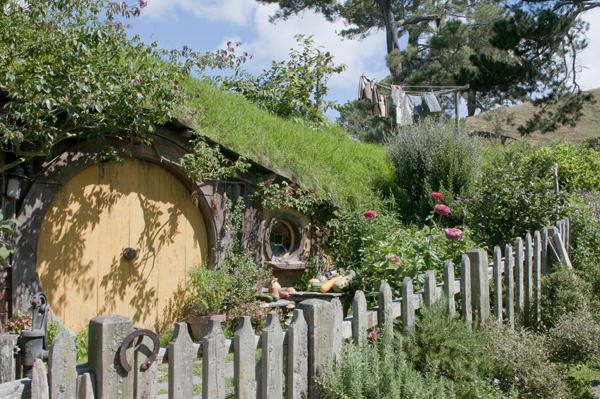 New-Zealand-Hobbiton-by-Ashley-Lynn-Photography (20)