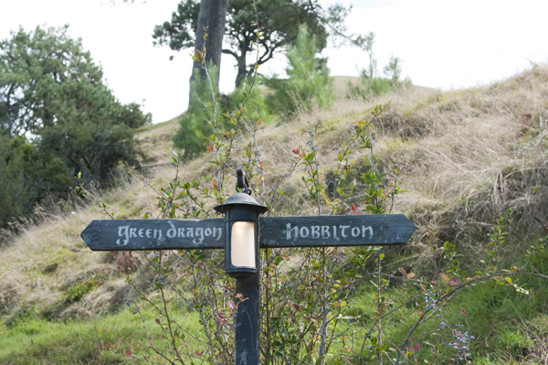New-Zealand-Hobbiton-green-dragon-by-Ashley-Lynn-Photography (21)