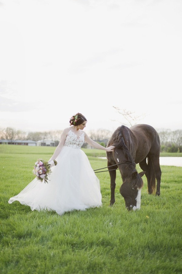 Honey Farm Wedding Bride with horse Dayton Ohio by Ashley Lynn Photography (45)