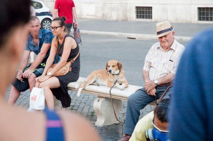 Rome-Italy-Vacation-by-Ashley-Lynn_Photography-04