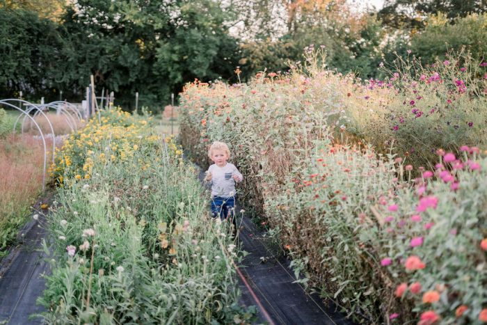 The Ohio Barn Gardens | Ashley Lynn Photography
