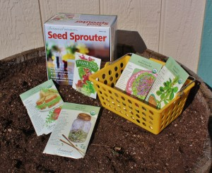 Seed starters and sprouters make it easy to grow microgreens. Some have multiple trays, allowing continuous growth. Photo by Marnie Brennan, Garden Coach