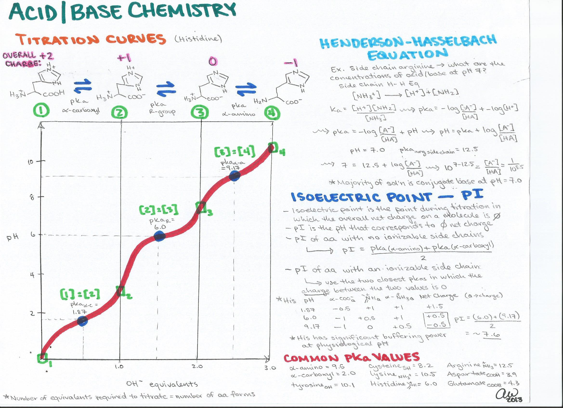 Biochemistry Study Guides