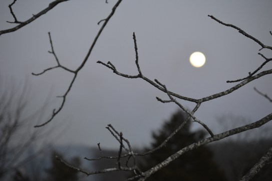 The moon added to the dramtic atmosphere