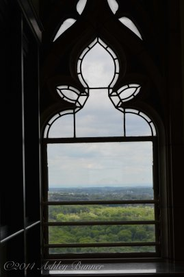 Window in the Cathedral of Learning