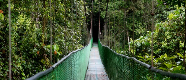 costarainforest9