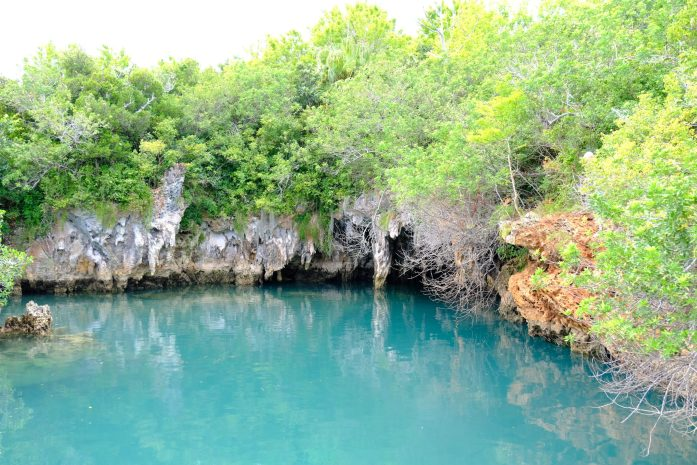 photo of blue hole hill where they used to train dolphins in bermuda photo from ashmonster.com