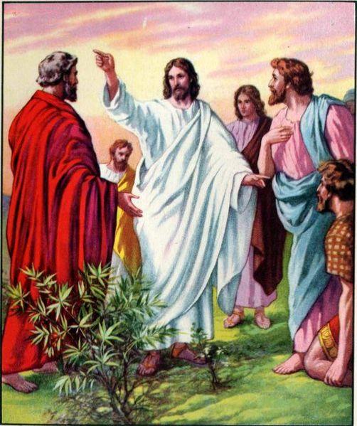 """چرا مسیح به پطرس گفت:""""دور شو ای شیطان؟"""" (مرقس فصل ۸ آیات ۳۱- ۳۸)"""