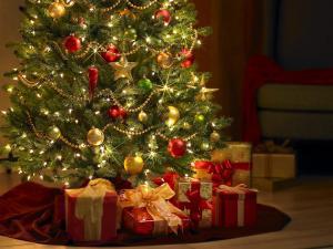 تاریخچه درخت کریسمس را می دانید ؟