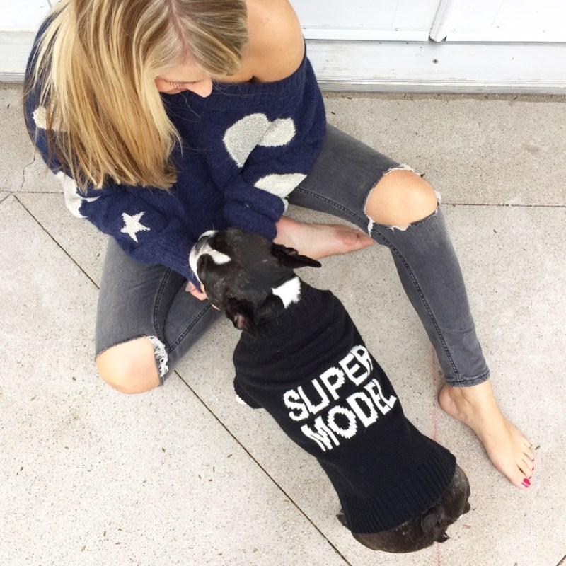 super model dog sweater