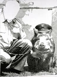 Police Pig, 1986