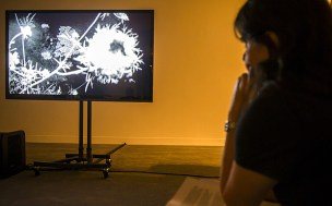 An image from Rosebud 2013, James Richards' video installation on show at Tate Britain's Turner Prize exhibition Photo: Rex Features