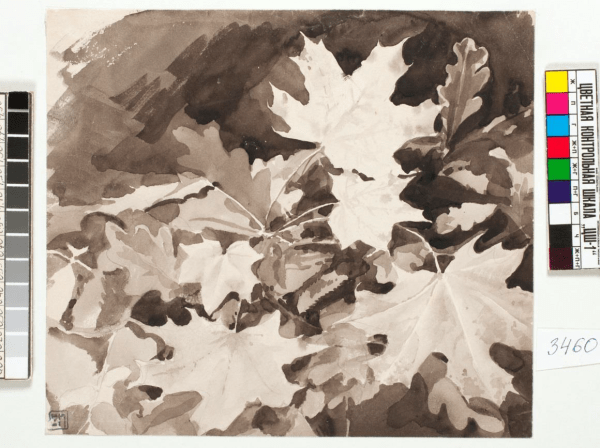 Листья клена и дуба / Leaves, c 1886-1889. Watercolour on paper, 12 x 20.5 cm