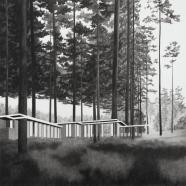 Rosenbaum #3, Jemma Appleby, charcoal on paper