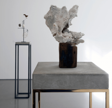 Coral Sculpture (2008), in the foreground, and Heraclitus (2014). Photograph: Private Collection, courtesy of Marc Jancou Contemporary, New York/Henry Moore Institute