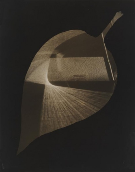 Leaf and Prism, 1938 © The Estate of György Kepes