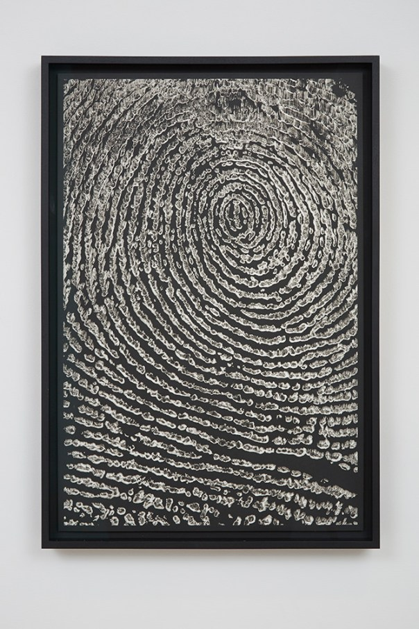 M-Theory IX, 2015. Platinum-palladium prints floated on museum board and framed in hardwood stained frames, 75 x 50 cm