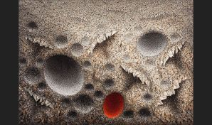 Aggregation 13 - NV045 RED, 2013. 163cm x 230 cm