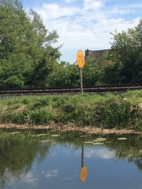 The railway line to Sligo sticks tight to the canal all the way to just beyond Mullingar.