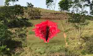 Artist Juliana Notari installed the artwork, entitled Diva, in rural art park in Pernambuco, Brazil. Photograph: Juliana Notari