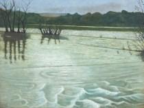 The Barrow in Flood, 2009, Courtesy of Kerlin Gallery