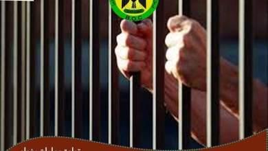 Photo of اعتقال متهمين بتهريب الآثار، وتجارة المخدرات في  بغداد