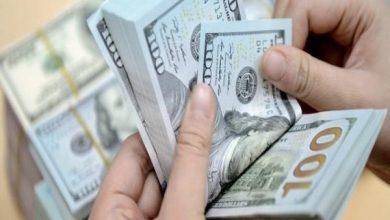 Photo of الدولار يستقر في بورصة الكفاح اليوم