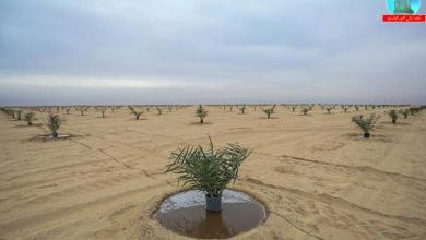 Photo of الموارد المائية: خزين المياه الجوفية المستدام متوفر بكميات قليلة لا تتيح التوسع الهائل للاستثمار الزراعي
