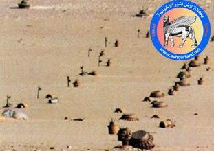 Photo of شؤون الألغام: لدينا إحصاءات كاملة بالمساحات الملوثة والعمل مستمر بتطهيرها