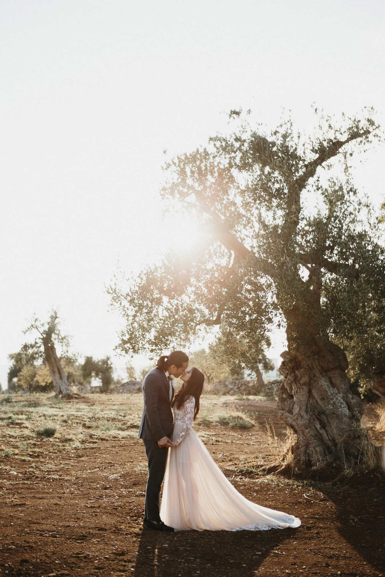 Bride and groom share an intimate moment in Italy during their wedding, in an italian olive field at sunset