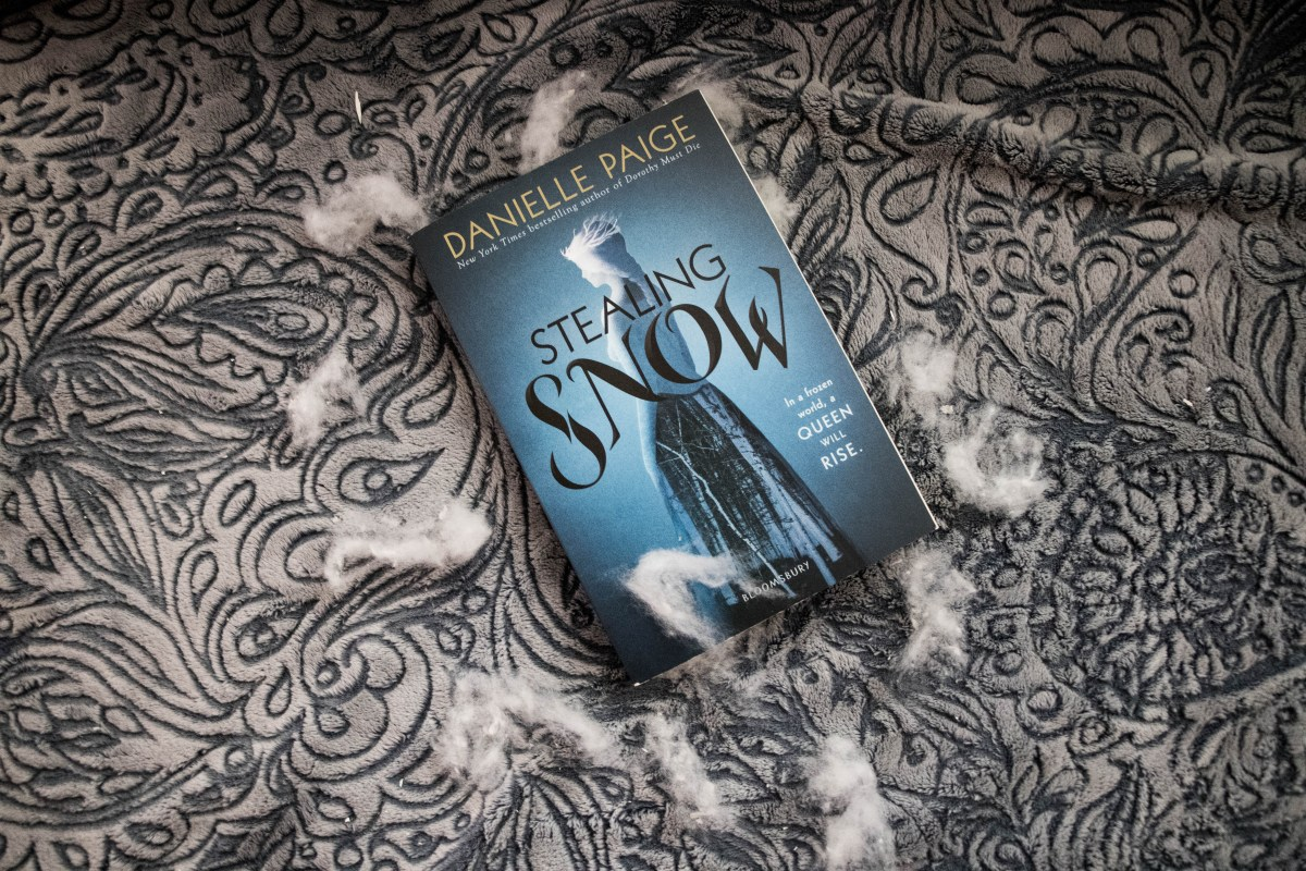 picture of the book stealing snow