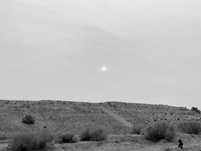 Black and white photo of California desert sun