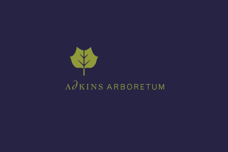 02a_ashton_adkins