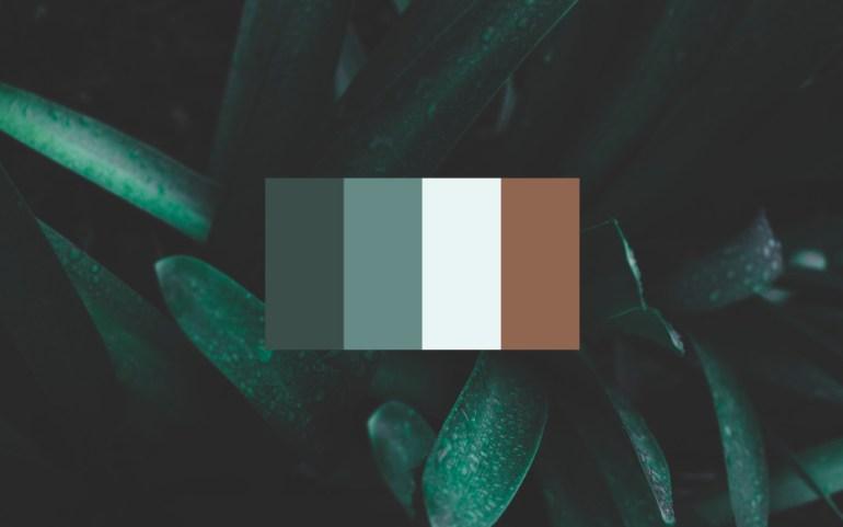 Vyne_Color_Palette_1