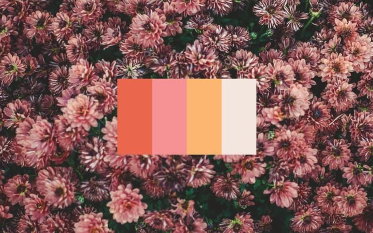 Vyne_Color_Palette_2