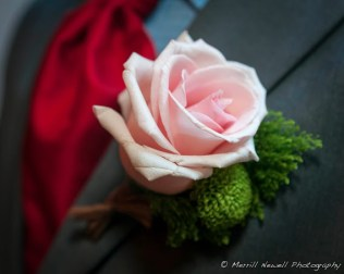 Blush rose boutonniere