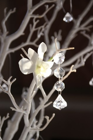 Detail of white orchid with crystal drop on branches