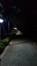 Inside IIMI