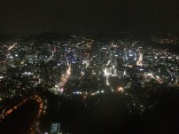Top of Namsam Tower