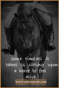Horsey Quote - Feel Alive