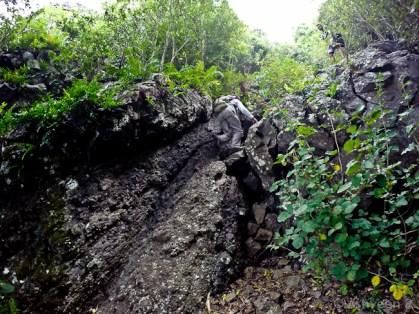 Climbing Lion Mountain-The Climb