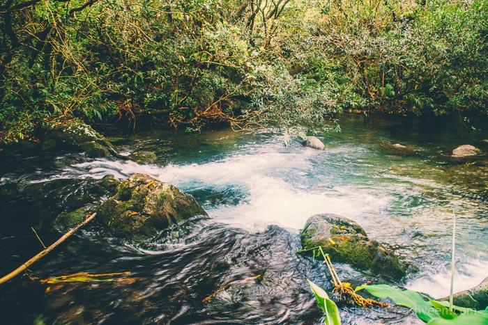 Eau Bleue Mauritius - Between Waterfall 2 & 3