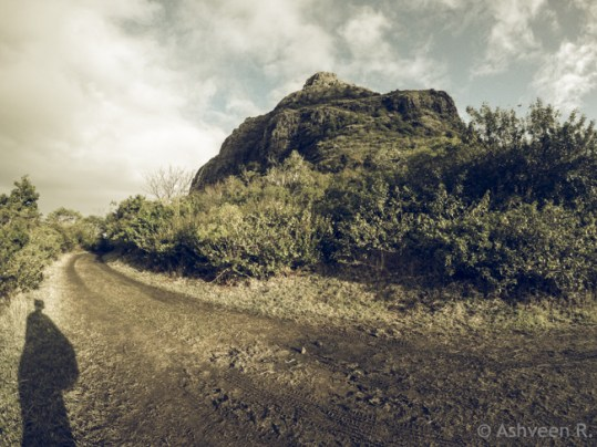 Hiking Le Morne Mountain