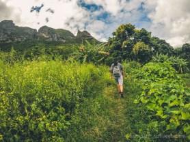 Hiking Pieter Both Mountain Mauritius - Start of Track