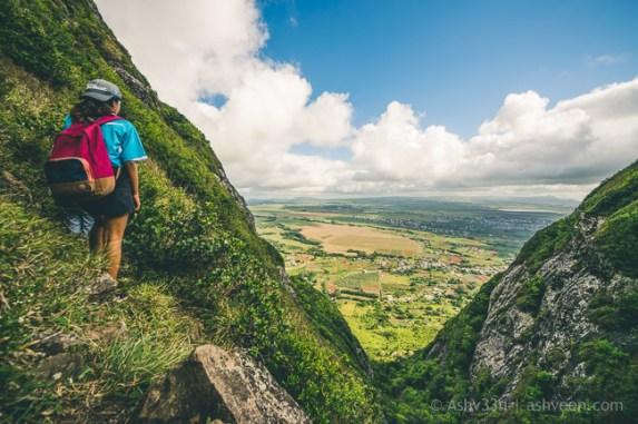 Hiking Pieter Both Mountain Mauritius - The View