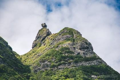 Hiking Pieter Both Mountain Mauritius - View over the Mountain