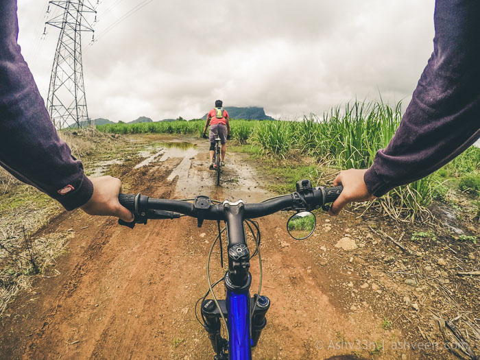 MTB Mauritius - Bassin Estate - Near Chicken Farm
